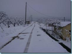 2009 01 03 Νάουσα Χιονόπτωση_007